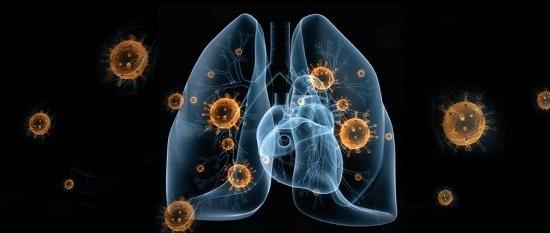 新型冠状病毒跟普通感冒的区别有哪些?