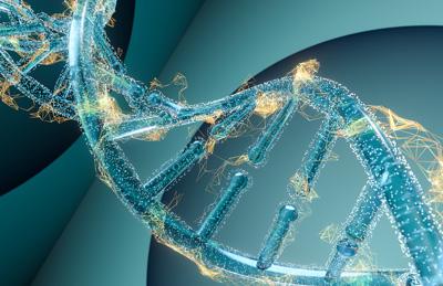香港产前DNA亲子鉴定,科学认证准确率最高。